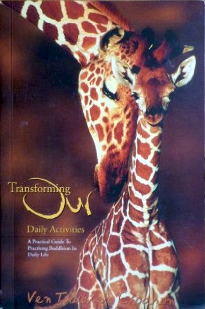 Cover of book Transforming Our Daily Activities.