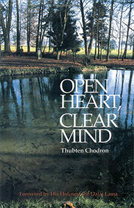Cover of the book Open Heart, Clear Mind.