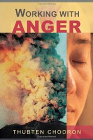 Cover of Working with Anger.