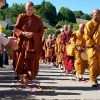 Bhikshuni and bhikshunis walking in 2 rows, with lay person spreading flowers on the path.