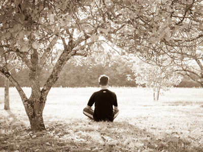 A man mediating in a park, surrounded by trees and leaves.