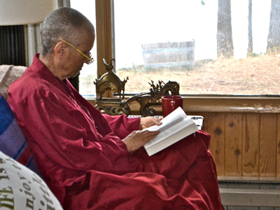 Venerable Chodron sitting near a window, reading a book.