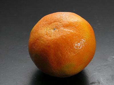 A single orange.
