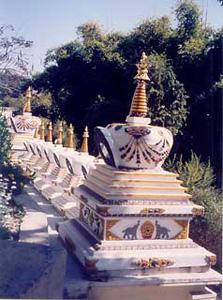 Stupas at Kopan Monastery, Nepal