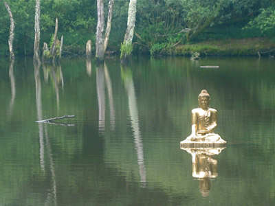 A gold buddha statute on a river.