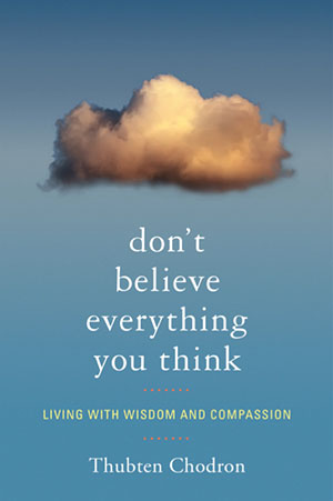Cover of book 'Don't Believe Everything You Think'.