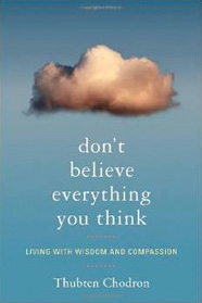 Cover of Don't Believe Everything You Think.