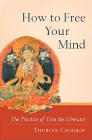 Cover of How to Free Your Mind.