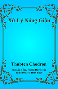 Cover of Working with Anger in Vietnamese.